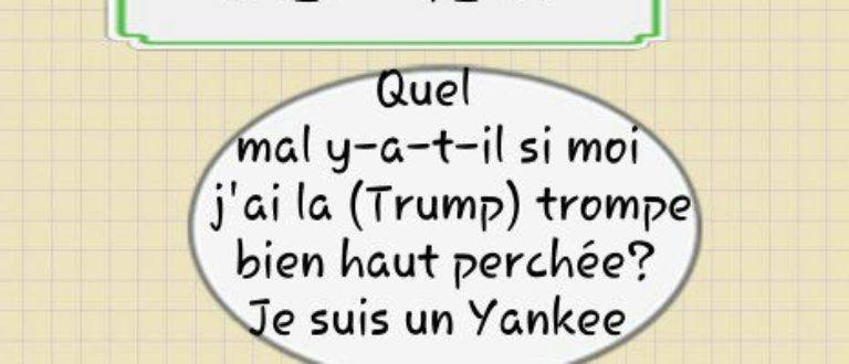 Article : Trump, gaffeur ou gageur?